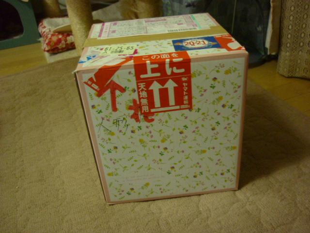 ステキな贈り物1