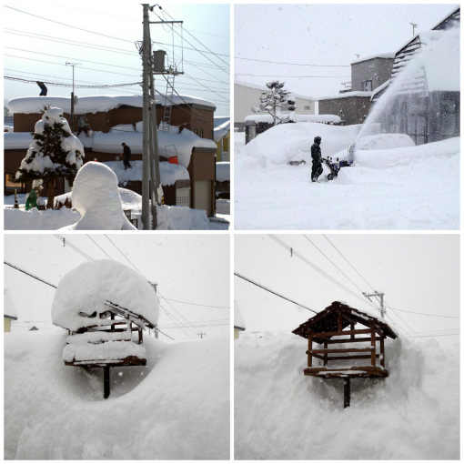 s-392-除雪