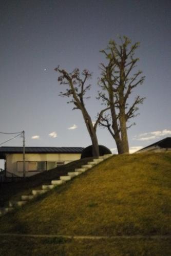 20121110_10.jpg