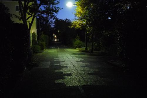 20121110_8.jpg