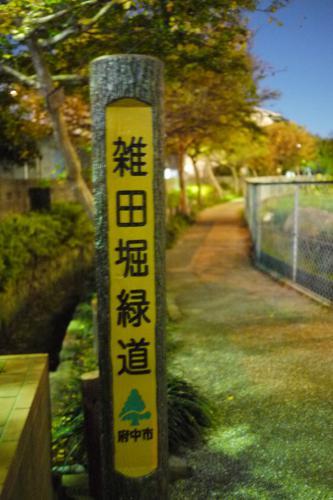 20121110_9.jpg