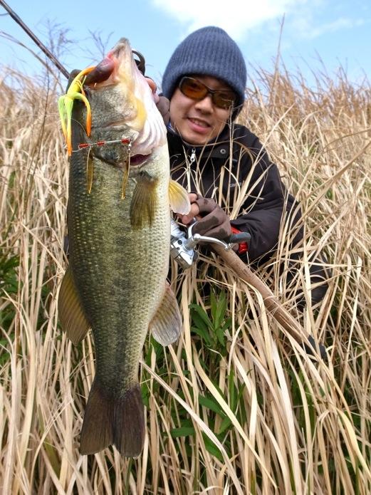 bass42cm20130419.jpg