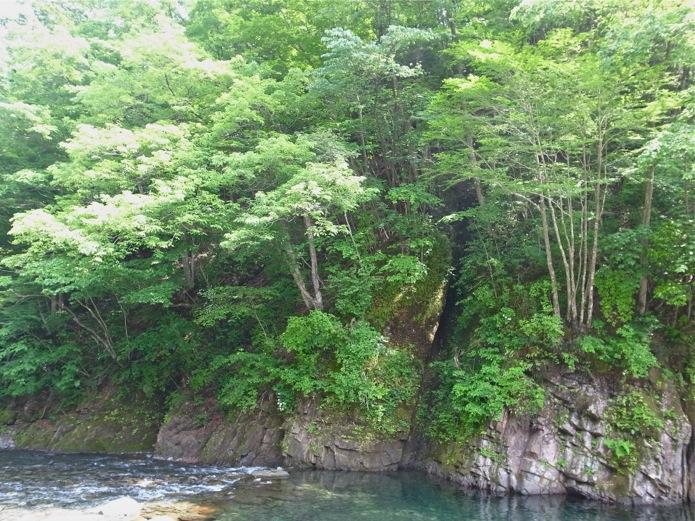 riverpot8.jpg