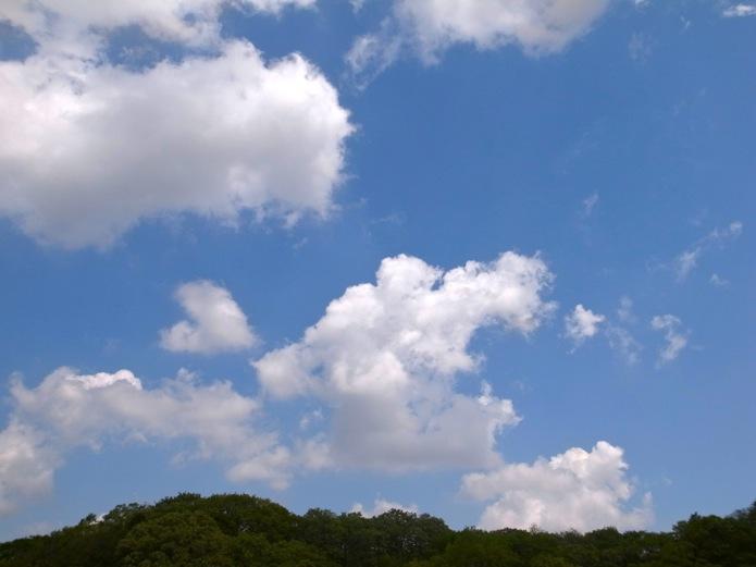 sky260413.jpg