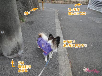 20140115-1q.jpg