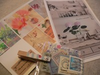 olive-san  card etc