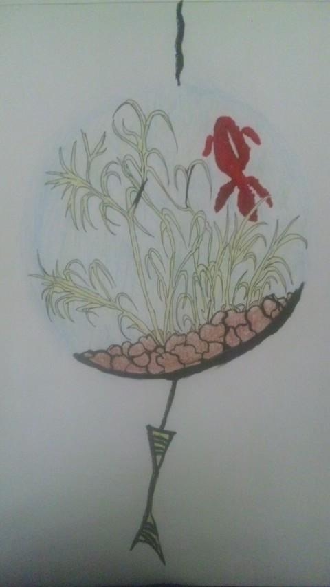 金魚_1~1