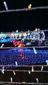 20121214大阪城1_R