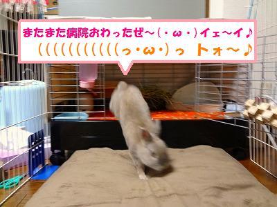 2_201402022135157dc.jpg