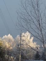 20140123朝陽と樹氷0