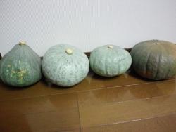 20141021やんちゃなかぼちゃ1