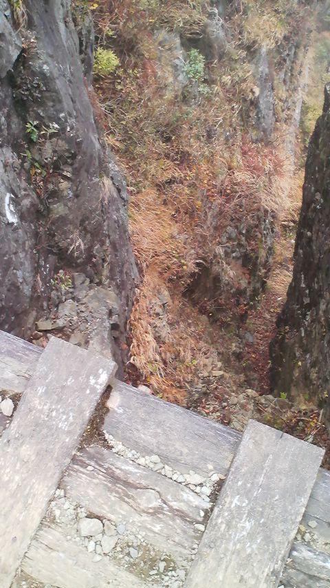 一本橋の下