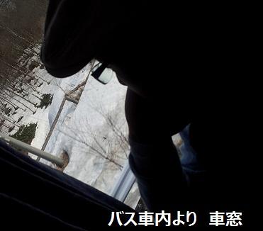 20130330_162445.jpg