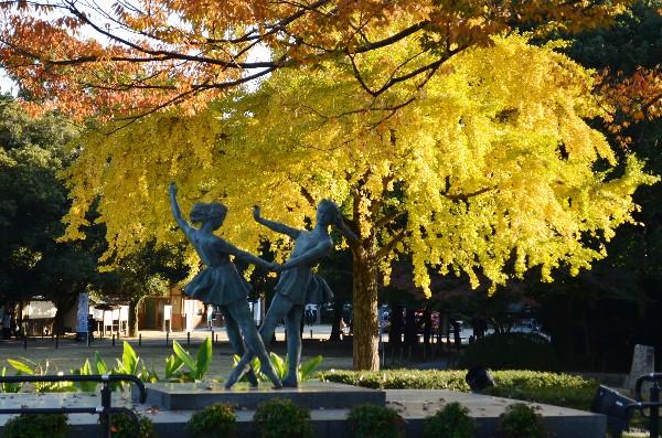 岡山県岡山市 後楽園 秋の庭園を巡る