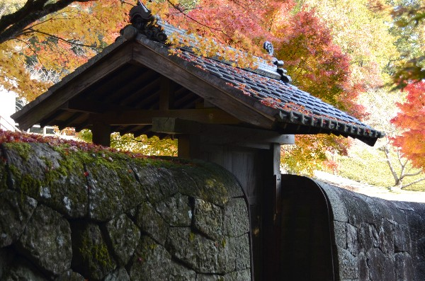 岡山県備前市閑谷 旧閑谷学校 石塀付近の紅葉