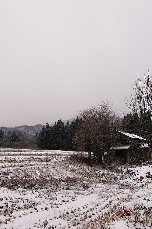 2012-1213-a-00021.jpg