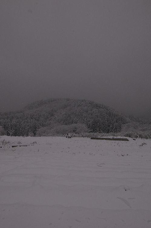 2012-1214-a-00011.jpg