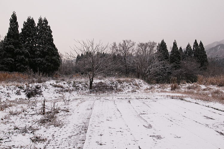 2012-1216-a-00011.jpg