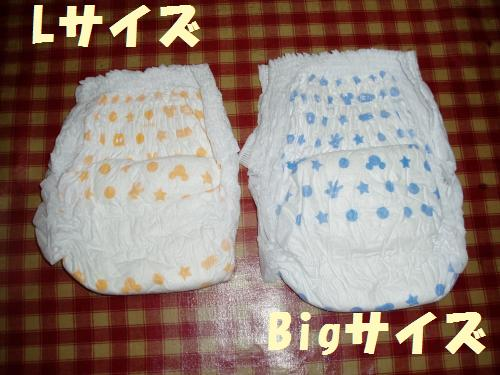 111_11convert_20110921231052.jpg