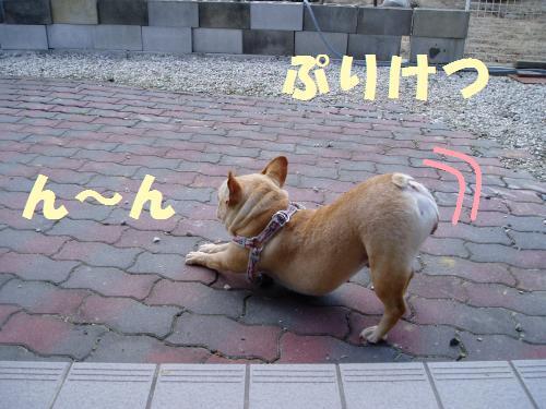 111_4convert_20110924012601.jpg