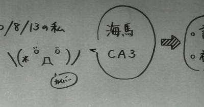 kaiba2.jpg