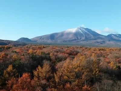s-浅間山2014年初雪