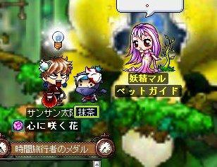 Maple110818_185059.jpg