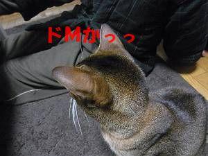 nagame.jpg