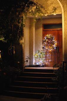 illumination20121127-1a.jpg