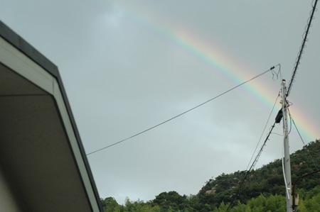rainbow2012918-2.jpg