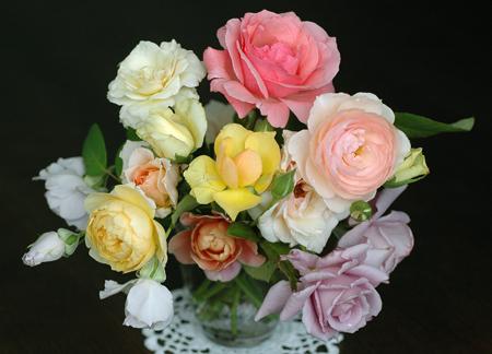 roses2012704-1.jpg