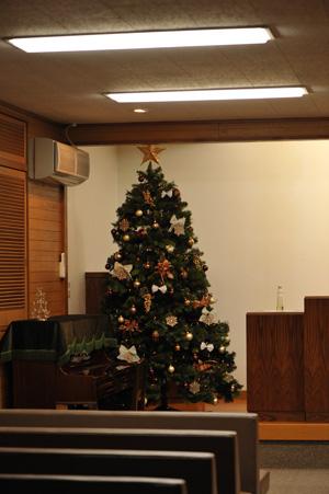 tree2012-1.jpg