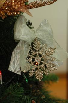 tree2012-5.jpg