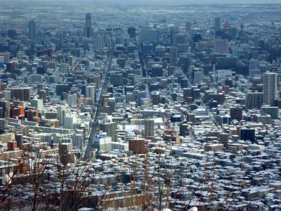 三角山から見下ろす札幌中心部。