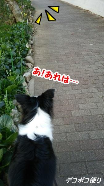 20141210 すれ違い1