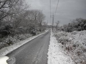 会社付近の道路
