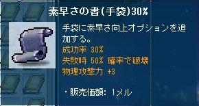 Maple121106_234833.jpg