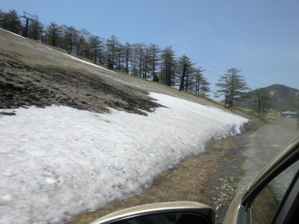 雪まであるよ