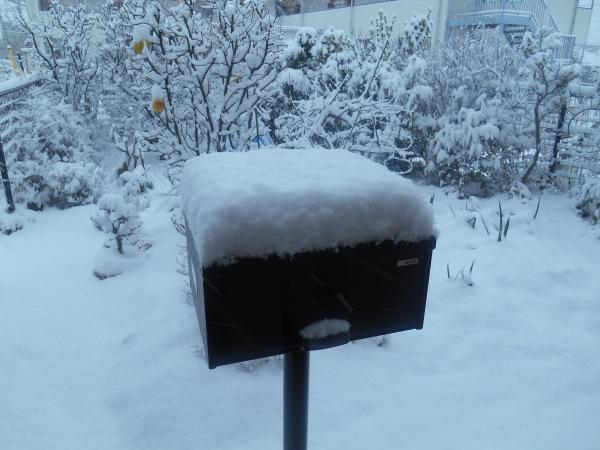 雪のポスト