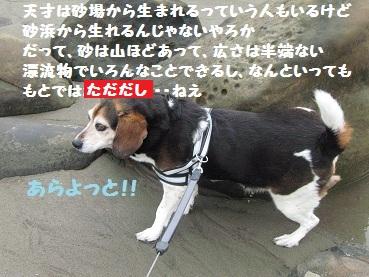 010_20120322205632.jpg