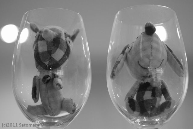 Dogs in glass