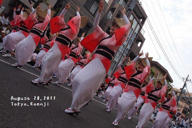 awaodori4.jpg