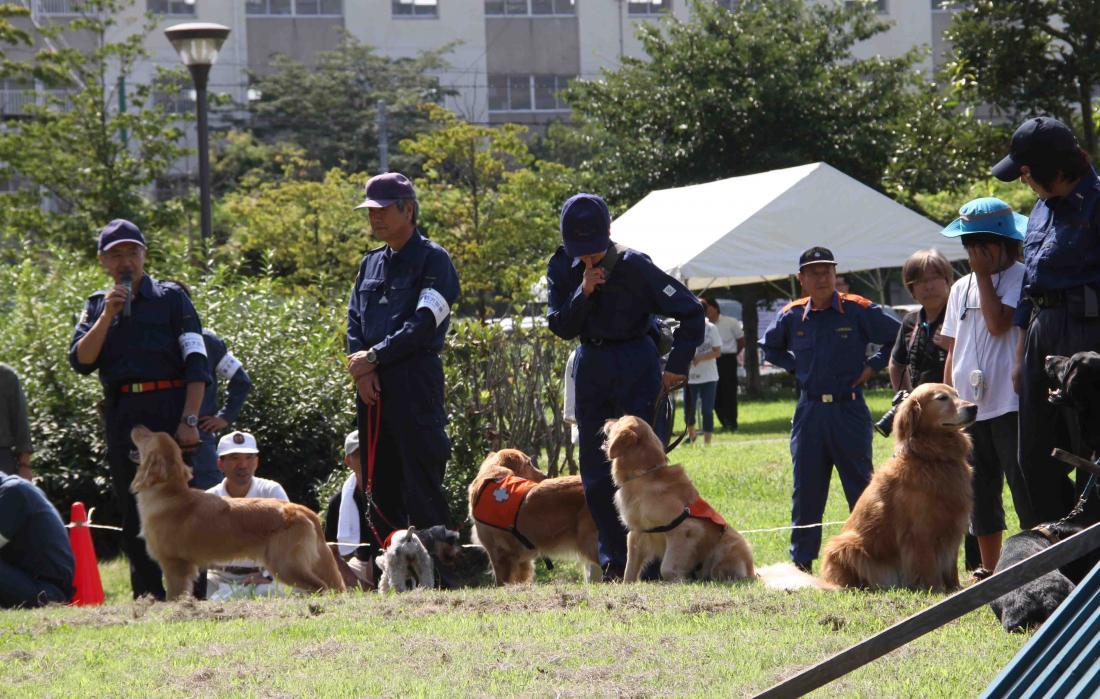 捜索犬デモ(1)