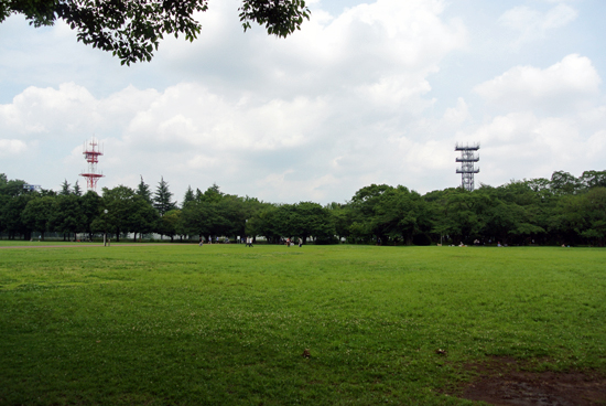 1206park3.jpg