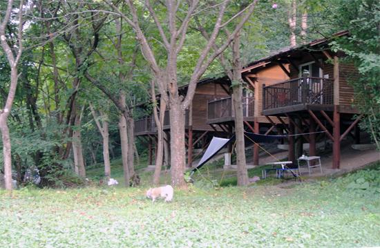 campsite1208.jpg