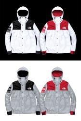 supreme × the north face Reflective 3M Mountain Parka