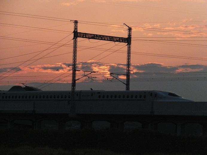 f121132.jpg