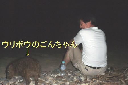 2011090802.jpg