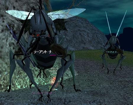 蟻女王と13