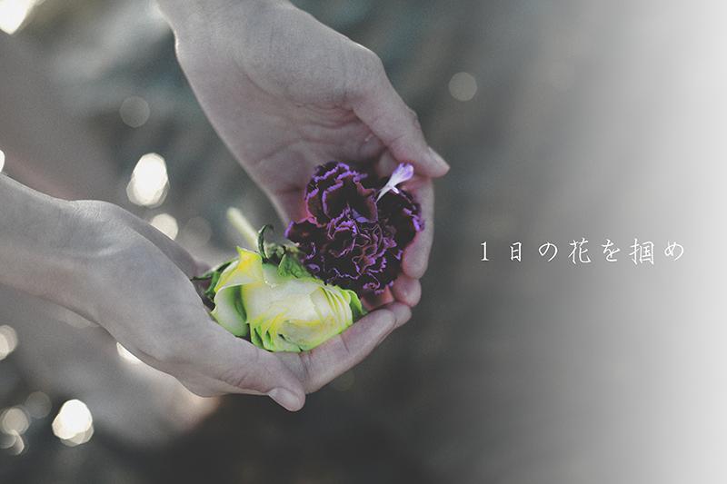 small_20141206.jpg